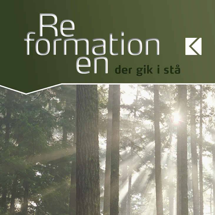 Reformationen der gik i stå